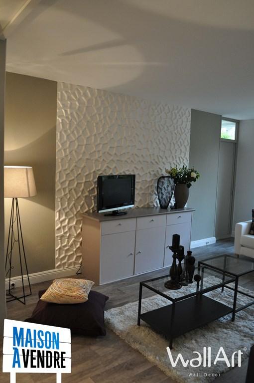 Les panneaux muraux 3d dans maison vendre m6 - Maison a vendre emission ...