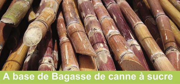 panneau 3d en fibres de canne à sucre