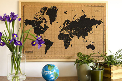 map monde liege